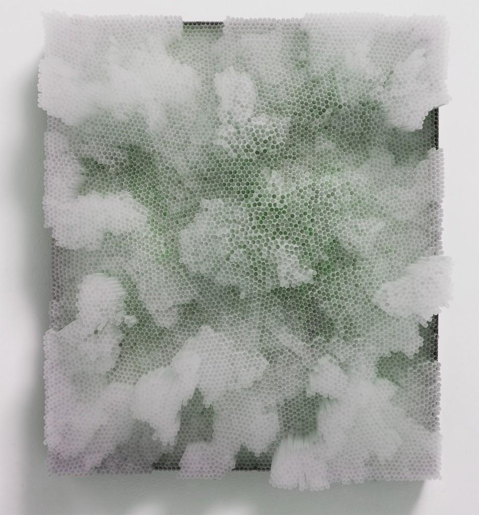 francesca-pasquali-trasparent-straws-1