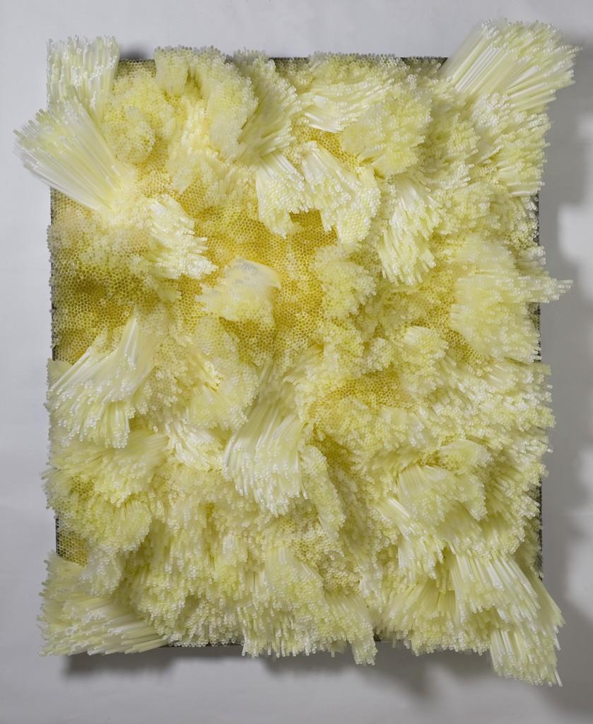 francesca-pasquali-yellow-straws-1