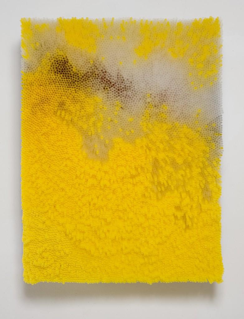 francesca-pasquali-yellow-straws-2