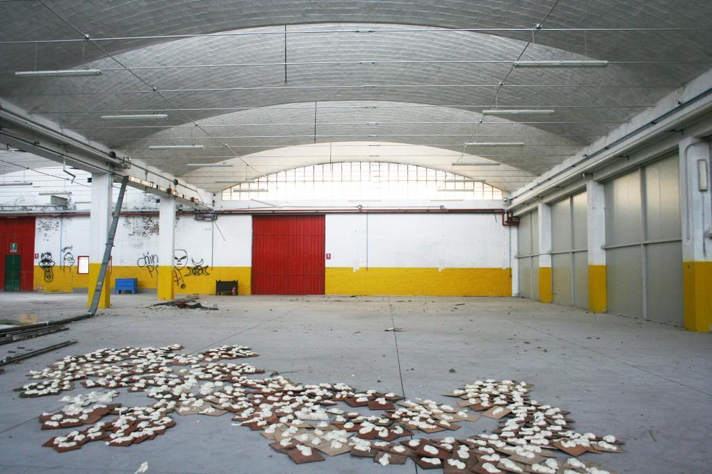 francesca-pasquali-raid-museo-per-piccioni