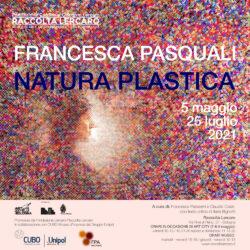 Natura plastica